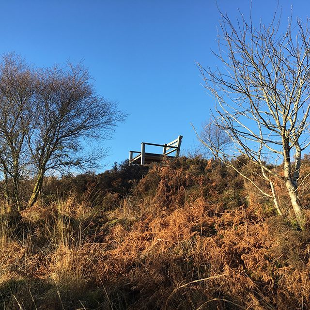 Stunned across this epic chair above #Tighnabruaich yesterday - wow! Amazing #outdoorarts it's up the # Douin looking out to #inchmarnoch . Sat in it for ages, felt really held. Would love to know who put it there. #massivechair #kylesofbute