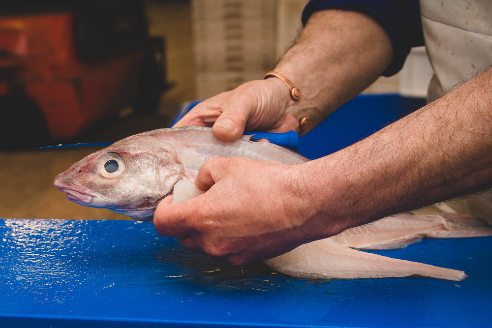 5. PROCESSING   All fish bought at the auction is delivered to our processing plants which are less than 100 metres from the market. All fish is then sorted, graded, weighed, packed, iced, labelled and palletised before distributing with all necessary documentation.
