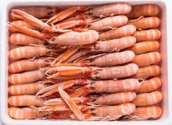 WHOLE LANGOUSTINE    Net Weight:  1.35kg   1.5kg   3kg   Format:  Frozen   Size Grade:  10-15   16-20   21-30   31-40   41-50   5-9   Notes:  Packed in polystyrene boxes. Graded and sized by individual langoustine amount per Kilo