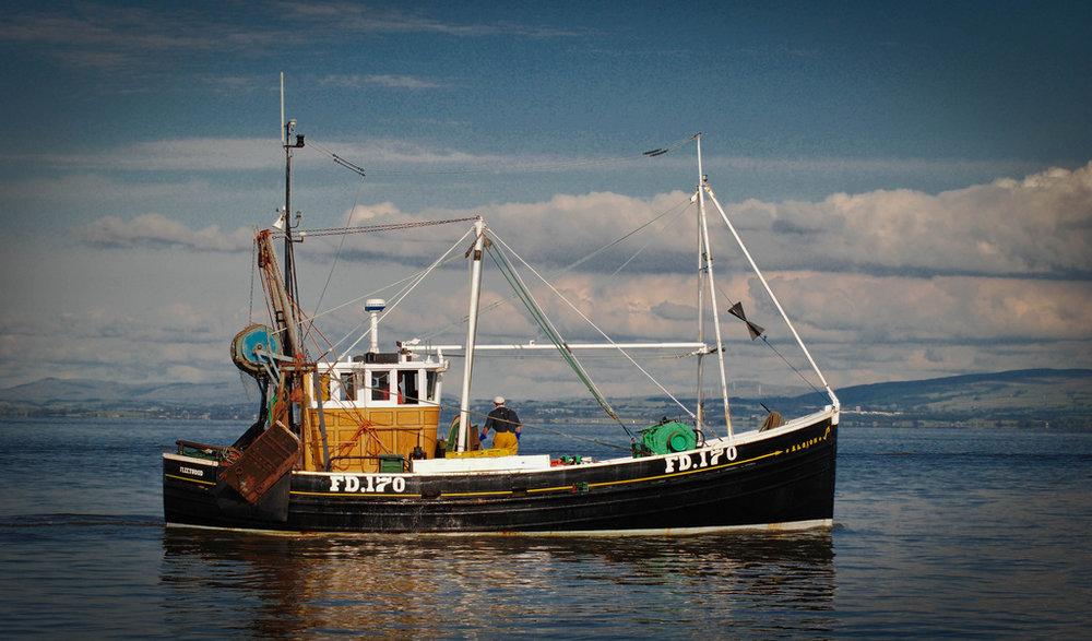 ALBION FD170   Type: Prawn Trawler  Size: 12.17m x 4.64m  Built: 1955; Buckie