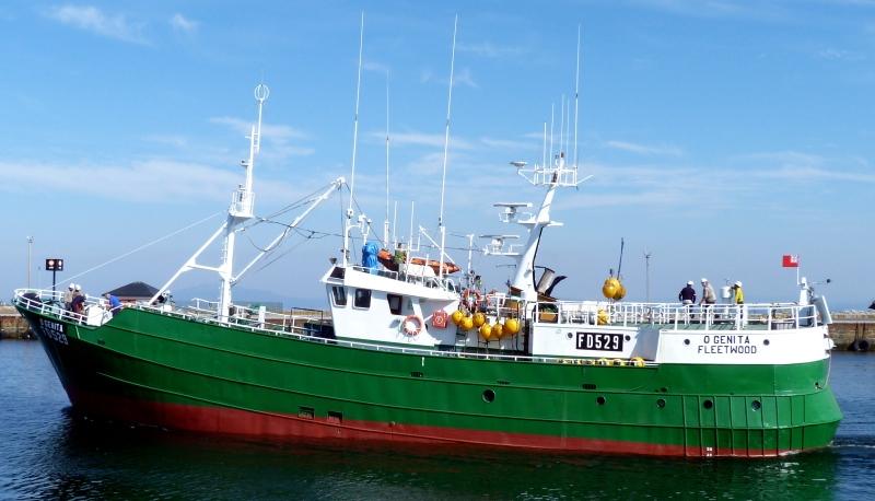 O'GENITA FD529   Type: Metal Hull Trawler  Size: 33.3m  Built: 1977; Spain