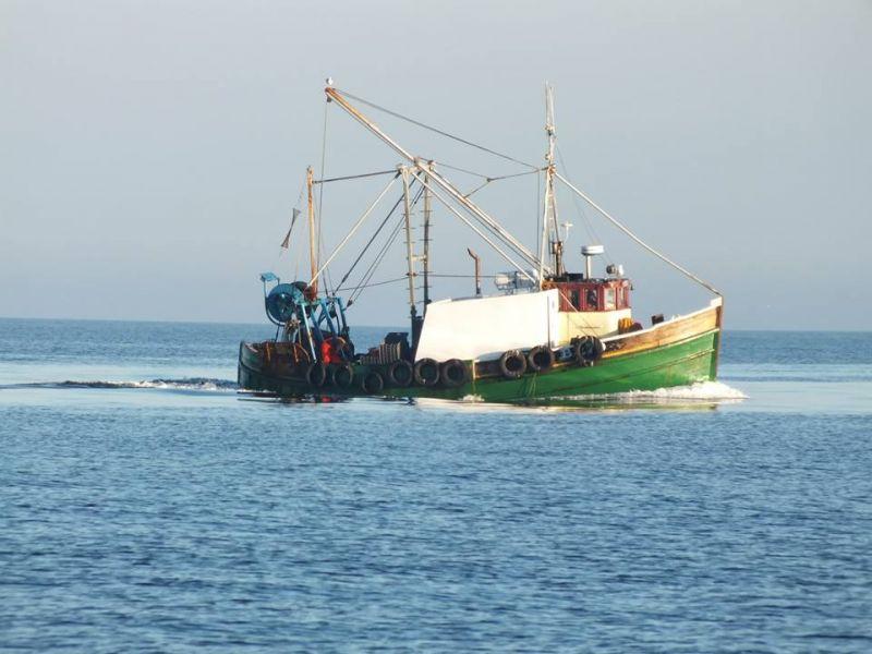 ROSEMARY ANN B279   Type: Wooden Hull Trawler  Size: 13.72m  Built: 1965; Girvan