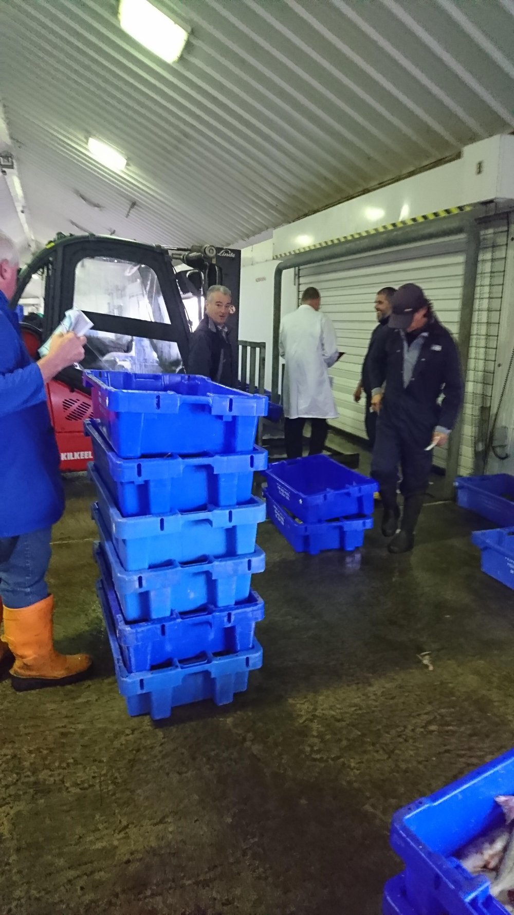 3. FISH MARKET   Once the catch is landed, it is stored in the chilled fish market until the auction. The fish market is located on the quay side of Kilkeel Harbour. The abundance of great quality fish each week indicates that our local fishing industry is going from strength to strength. The success of Sea Source shows we have been working hard to ensure our fishermen get a fair price for their catch.