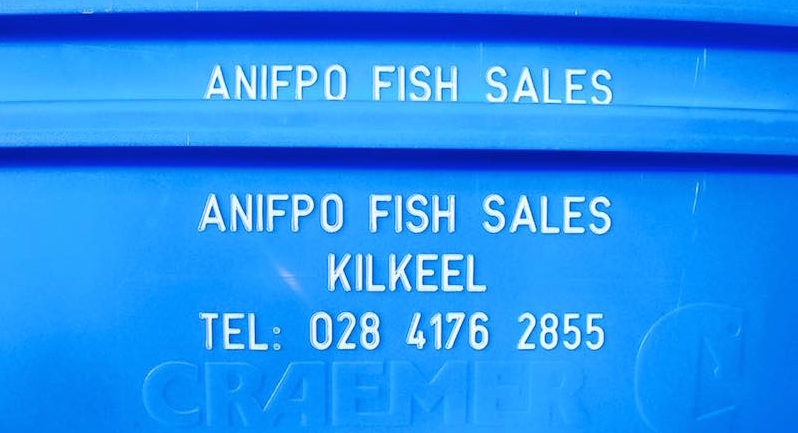 ANIFPO Fish Box.jpg