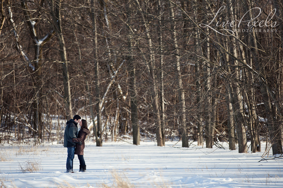 winter engagement in guelph ontario
