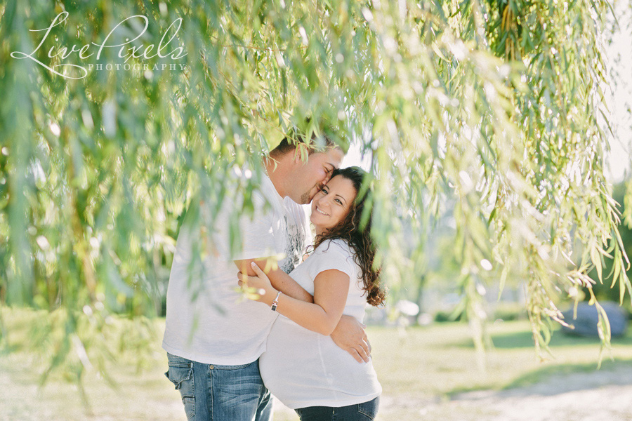 """maternity photos in the willow tree"""