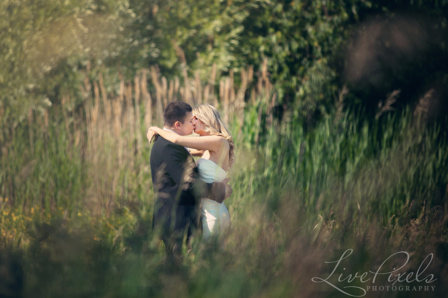 """bride and groom kissing in tall grass"""