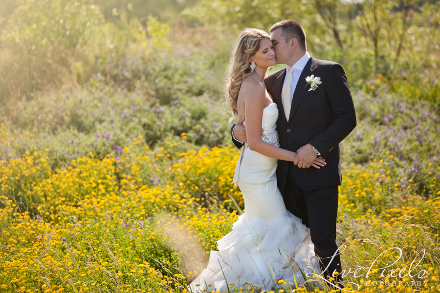 """bride and groom in the field of yellow flowers"""