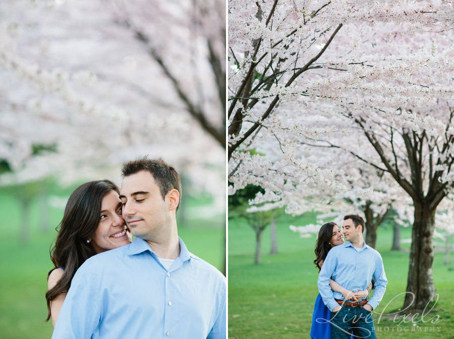 """cherry blossoms engagement high park"""