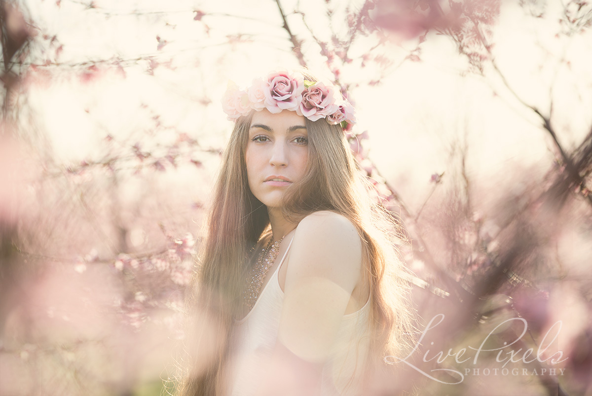 Creative beauty portraits of a beautiful young woman in cherry blossoms