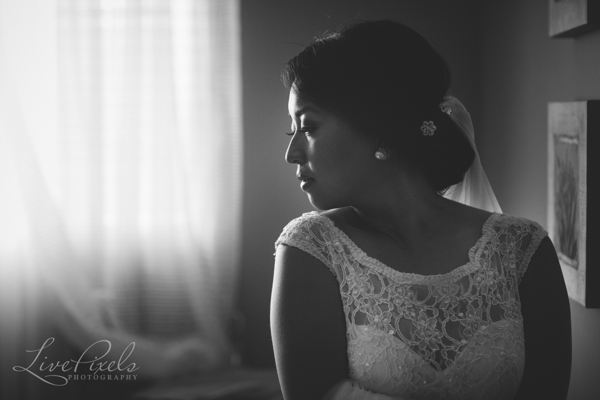 Beauty portrait toronto bride