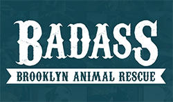 badass-brooklyn-rescue.jpg