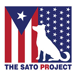 the-sato-project.jpg