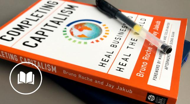 《完成资本主义》 - Bruno Roche和Jay Jakub合作撰写的这本书分析缜密,非常具有实际意义。