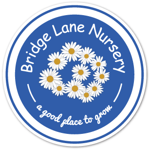 Bridge Lane Nursary   , South West London   Studio Cultivate have run the Kindergarden programme at Bridge Lane Nursery for 3 years. In this time we have created a hugely productive edible garden and helped the school build a garden shed, to host the Kindergarden workshops and house the programme's many character models and illustrations.