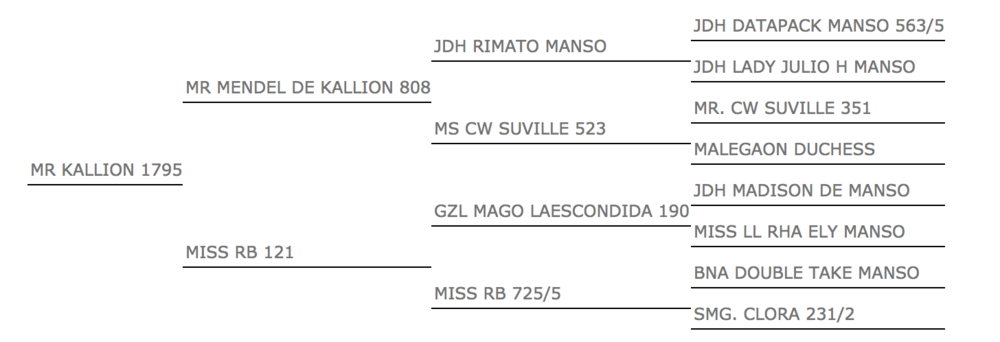 mr kallion 1795 pedigree.png