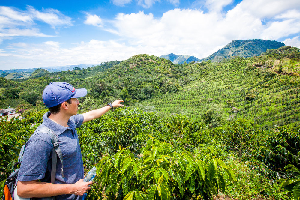 FIVE farms.Multiple Microlots. - We have 5 farms spanning 400 Hectacres ranging across varying altitudes each growing different coffees such as Geishas, Bourbons, or Caturras.