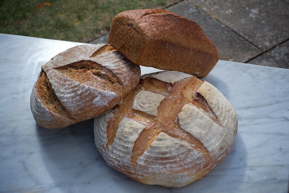 COBS Sours Selection.jpg