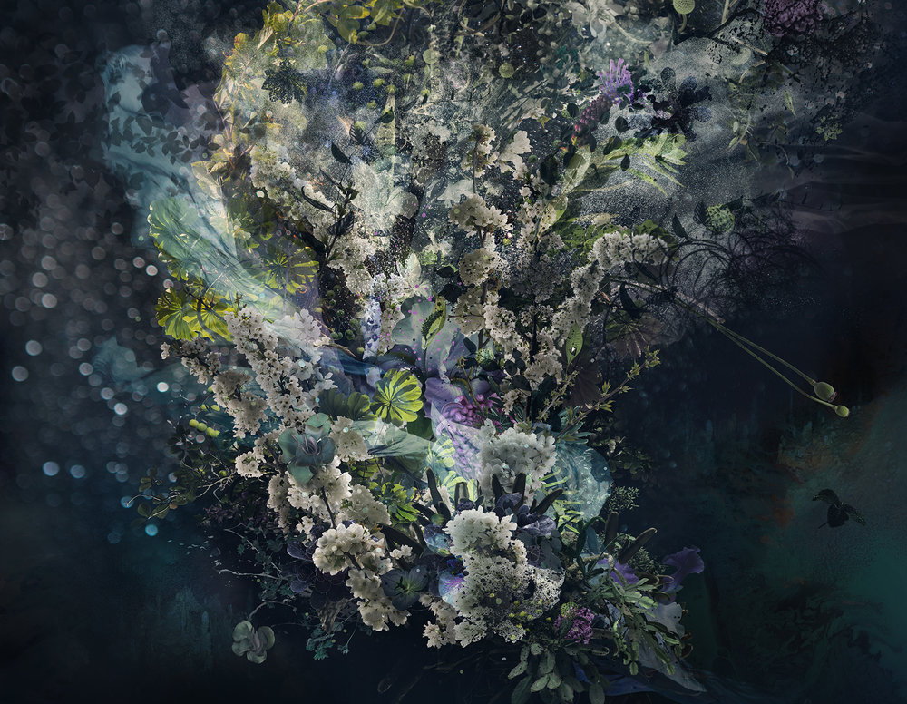 """Astral,  C-Print, Plexi Face-Mounted on Aluminum Panel, Available in 48"""" x 62"""" / 59"""" x 76"""""""