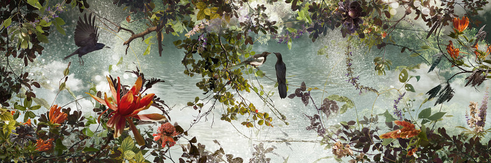 """Wander,  C-Print, Plexi Face - Mounted on Aluminum Panel, Available in 24"""" x 72"""" / 32"""" x 96"""""""