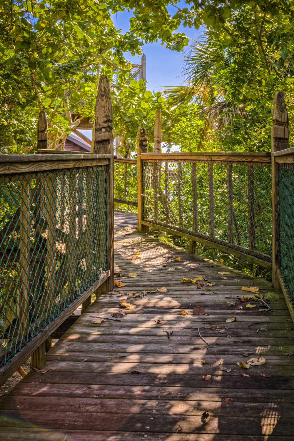 Rustic Tropical Paradise Suspended boardwalk