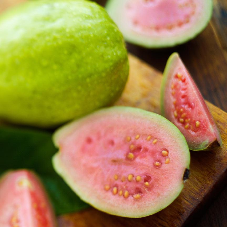 Thai Maroon Guava