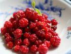 surinam cherry 2.jpg