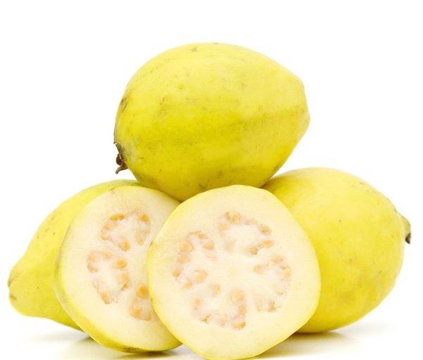california-tropical-mexican-cream-guava.jpg
