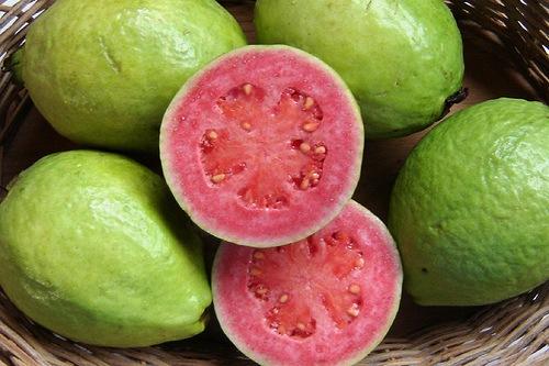 california-tropical-pink-guava.jpg