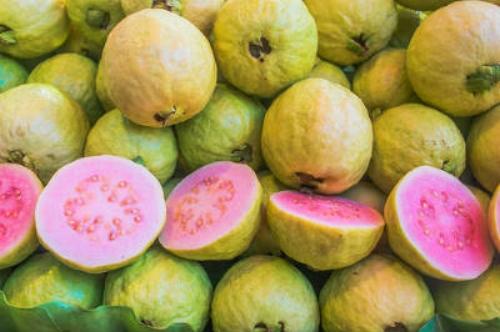 california-tropical-guava.jpg