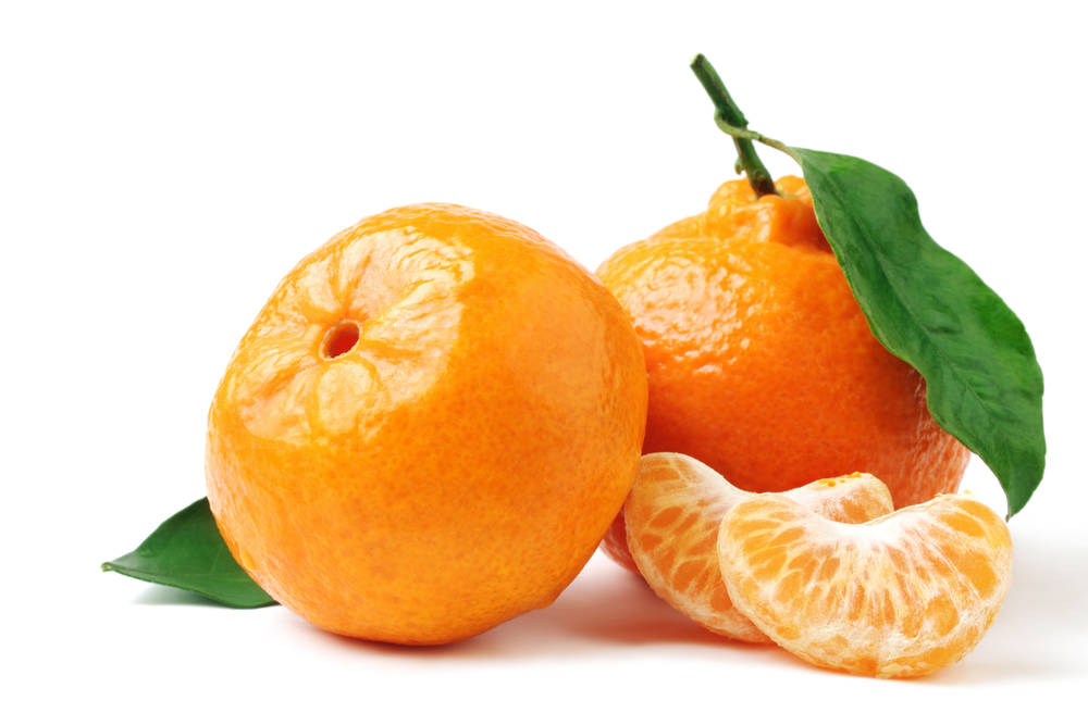 california-tropical-satsuma-mandarin-1.jpg