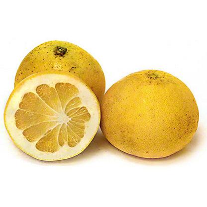 california-tropical-melogold-grapefruit-1.jpg