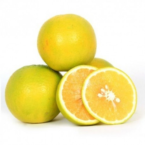 california-tropical-sweet-lemon-1.jpg