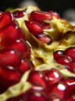 pomegranate wonderful 5.jpg