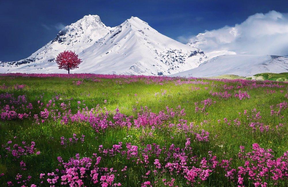 breathtaking-calm-color-36478.jpg