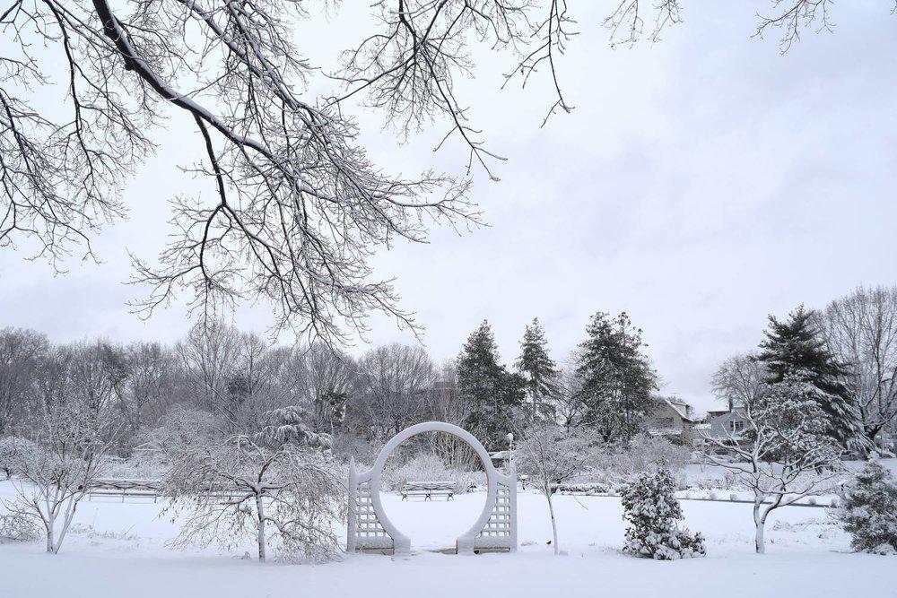 Wintertime at the Queens Botanical Garden. Photo via NYC Go.