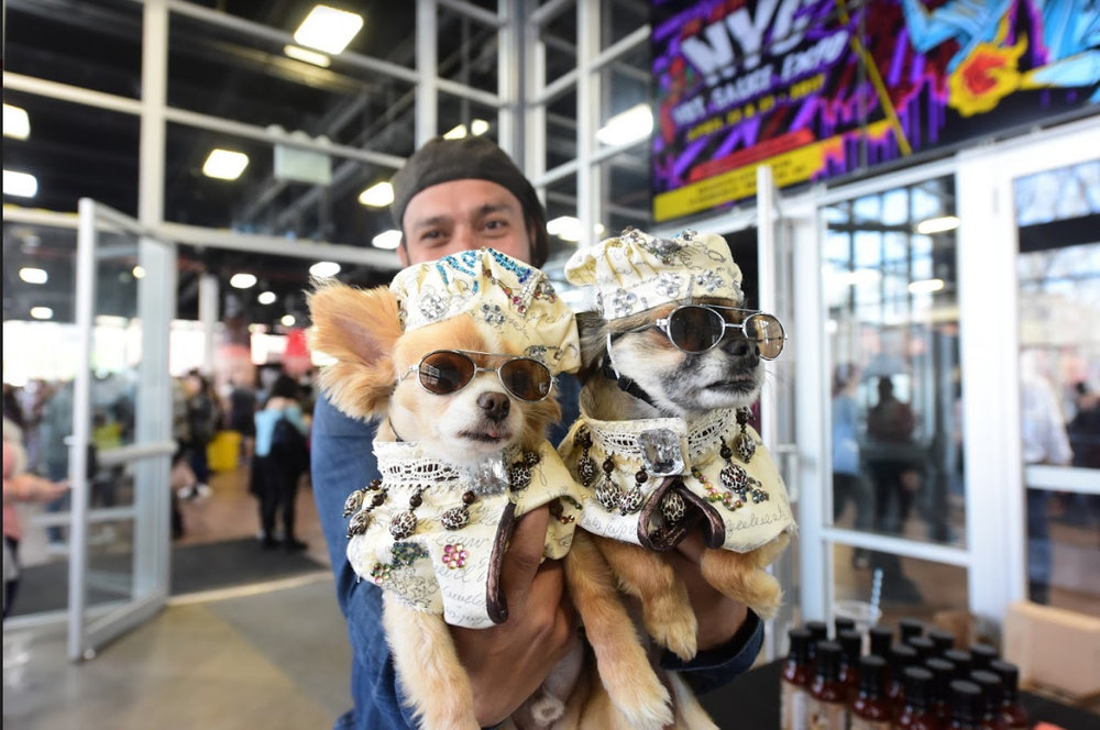 The 2015 Chihuahua Beauty Paegant. Eagle file photo by Andy Katz.