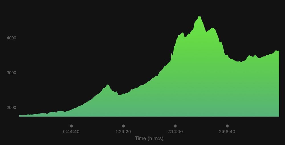 Our elevation map for the day.