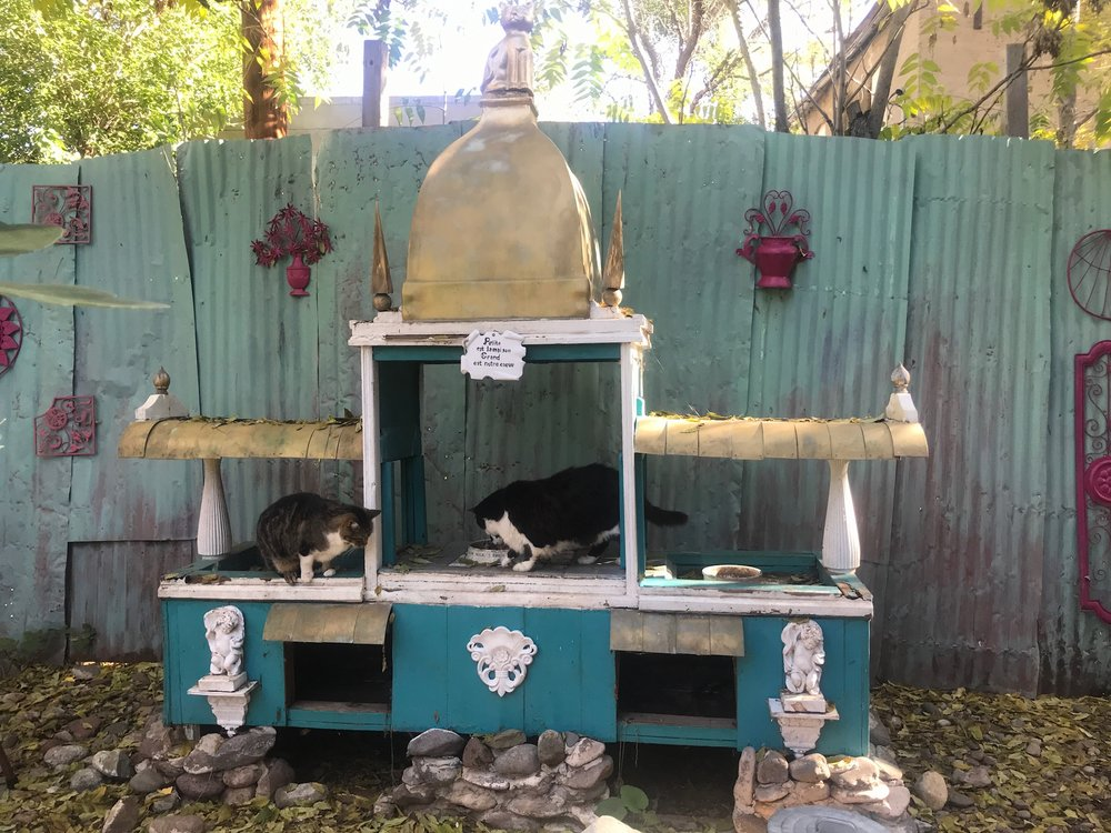 Cat temple at our bed and breakfast.