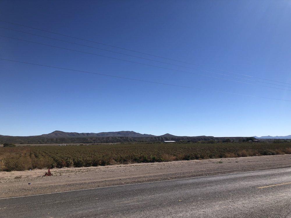 Chile field.