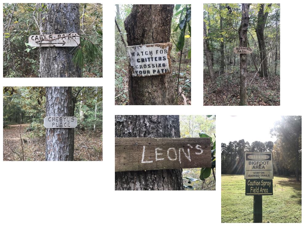 All the signs we found in the forest.
