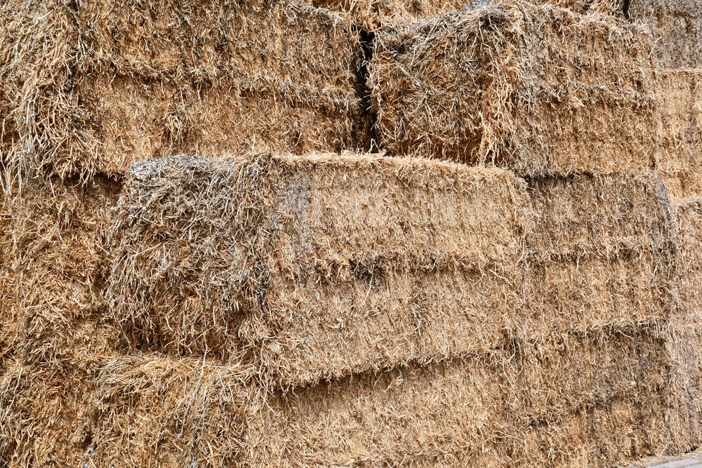 4. MEDIUM SQUARE - Peastraw medium square bale ideal for gardens as a natural mulch and weed killer as well as providing nitrogen and assisting with great soil structure. Great size for bigger garden areas that you need to cover, with approx 10-12 conventional bales in one.Check our peastraw range here!