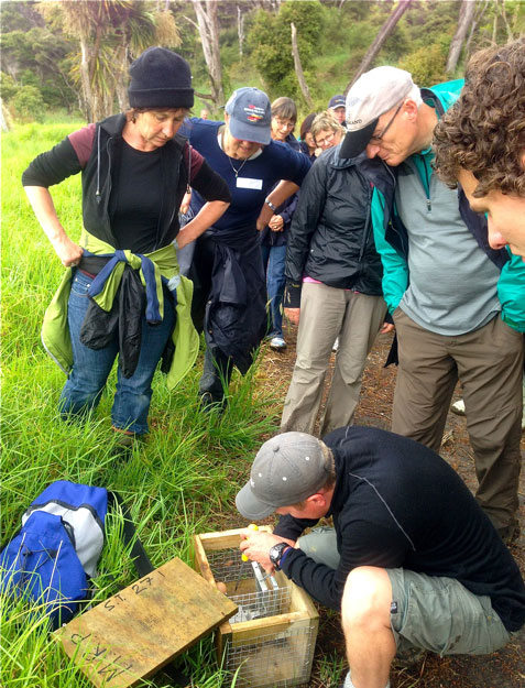 Mataia restoration project volunteers