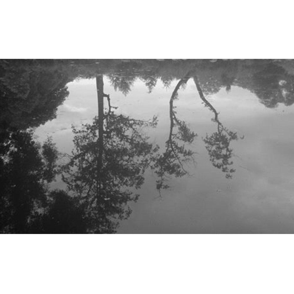 albumtemp (64).JPG