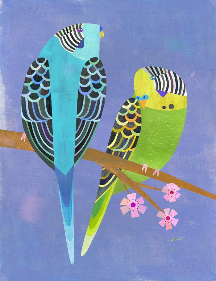 parakeet pair