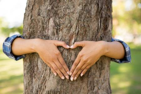 hugging-tree.jpg