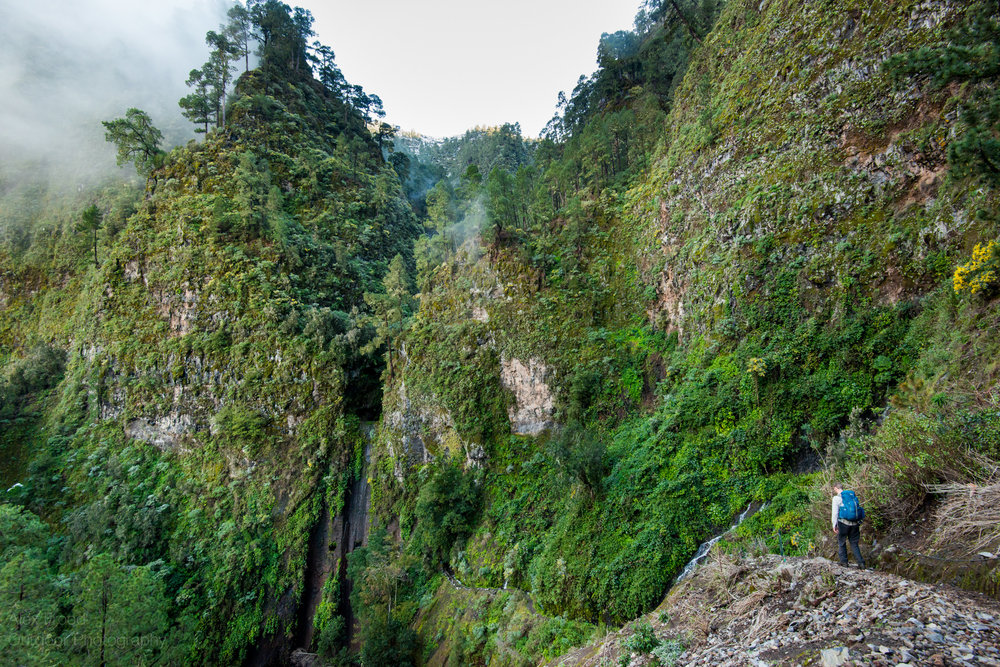La Palma-5.jpg
