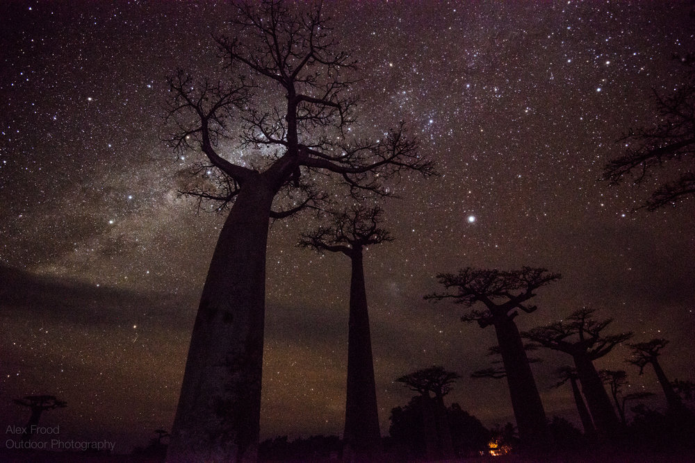 Madagascar-29.jpg