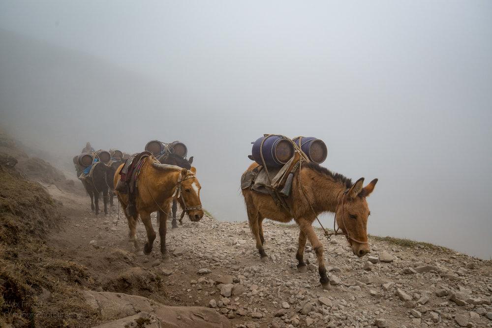 Salkantay, Peru