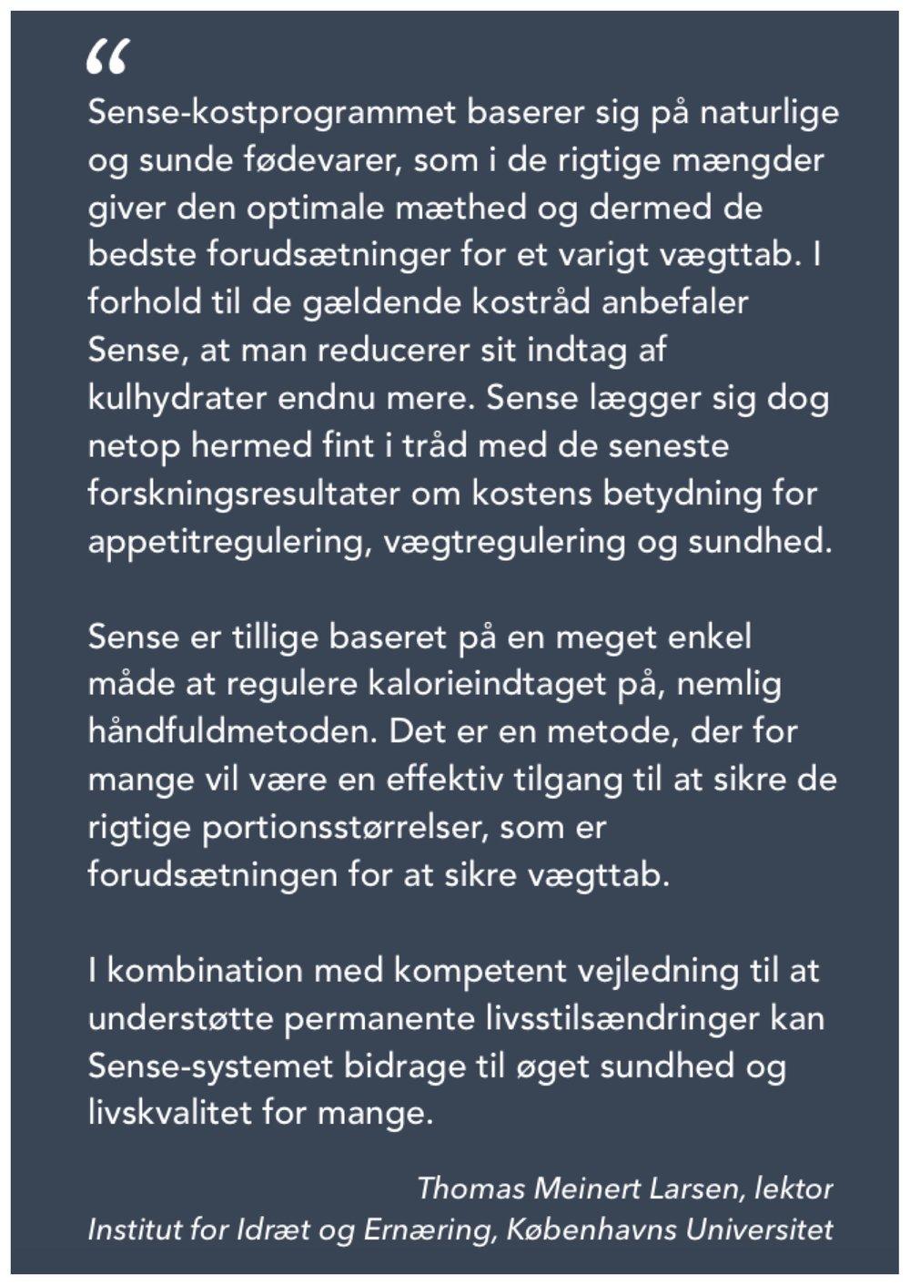Udtalelse, Thomas Meinert Larsen.jpg